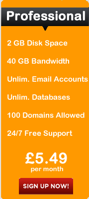 Professional Hosting Package